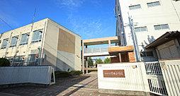 筒井小学校 約430m(徒歩6分)