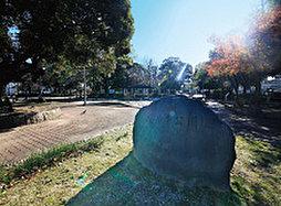 建中寺公園 約80m(徒歩1分)