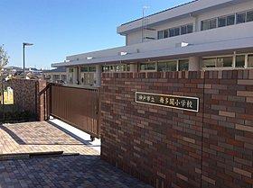 写真(1)「舞多聞小学校」(H28年3月撮影)