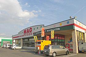 マグフーズ 中島店 (約890m:徒歩12分)