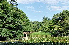 石神井公園…徒歩1分(80m)