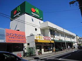 日用品の買い物はこちらでどうぞ。マルエツ上本郷店(597m)