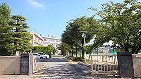 市立柏第三中学校(約330m・徒歩5分)