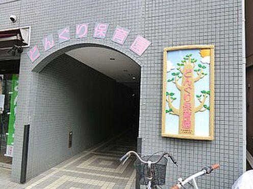 マンション(建物全部)-文京区白山5丁目 どんぐり保育園