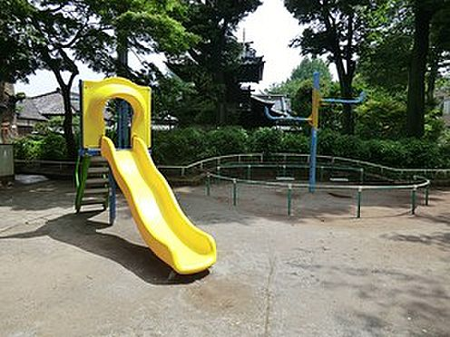 マンション(建物全部)-文京区白山5丁目 周辺環境:白山公園
