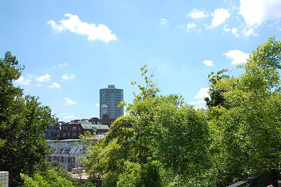 建物全部その他-品川区上大崎3丁目 B棟眺望