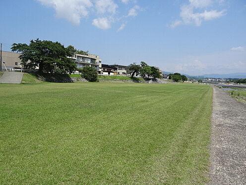 アパート-金沢市西大桑町 その他犀川緑地まで556m