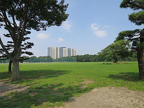 土地-西東京市柳沢5丁目 武蔵野中央公園 徒歩14分