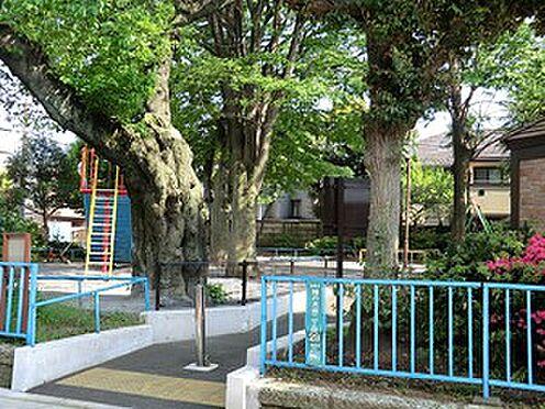 マンション(建物全部)-目黒区碑文谷5丁目 柿の木坂児童遊園