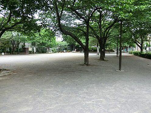 マンション(建物全部)-豊島区上池袋4丁目 上池袋さくら公園