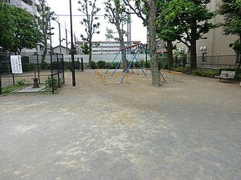 マンション(建物全部)-北区滝野川7丁目 周辺環境:千川上水公園