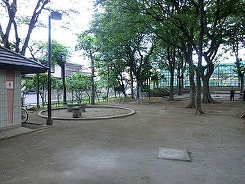 マンション(建物全部)-文京区本駒込4丁目 周辺環境:神明公園