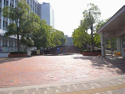 マンション(建物全部)-文京区白山1丁目 大学東洋大学(白山キャンパス)まで499m