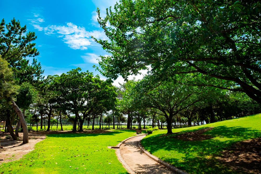 木更津潮浜公園 約870m(徒歩11分)