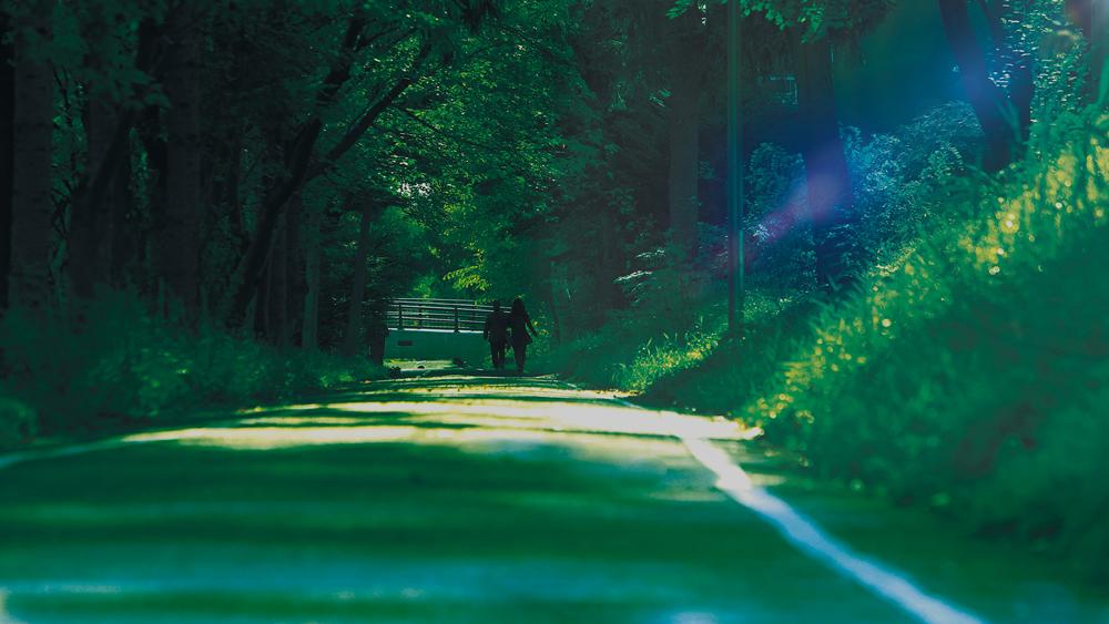 白石こころーど(サイクリングロード) 約15m(徒歩1分)