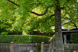 宇都宮城址公園 約1,120m(徒歩14分)