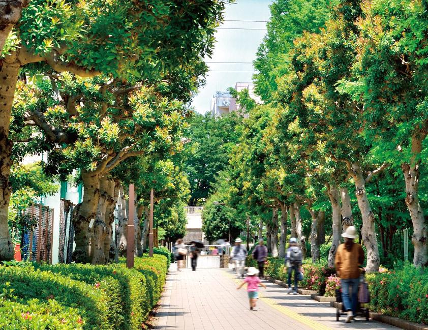 駅へ続く緑道 約630m(徒歩8分)