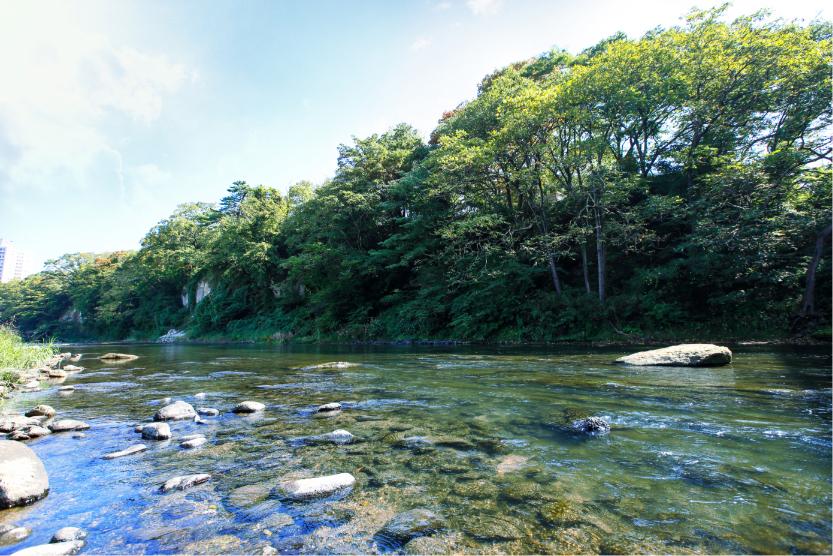 広瀬川 約450m(徒歩6分)※2019年10月撮影