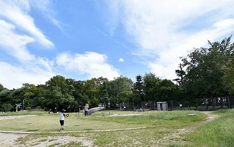 東中条東公園 約380m(徒歩5分)