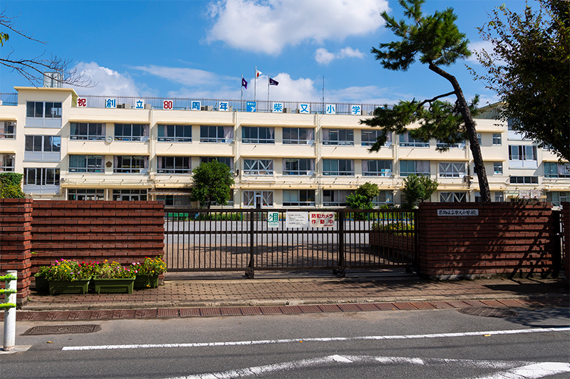 柴又小学校【通学区】 約450m(徒歩6分)