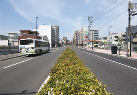 中広通り 約240m(徒歩3分)