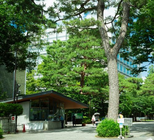 成城大学 約880m(徒歩11分)