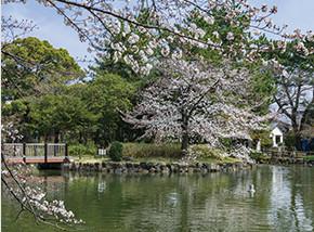 志賀公園 約1,100m(徒歩14分)