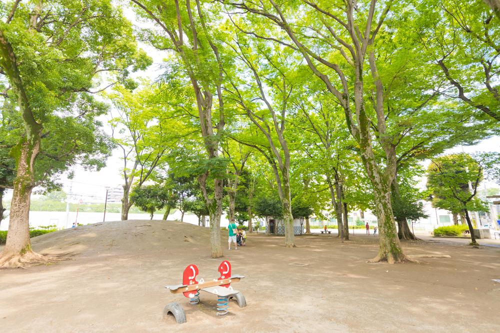 板谷公園 約40m(徒歩1分)
