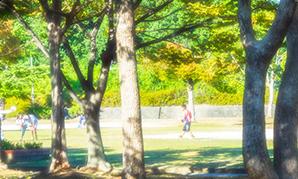 阪今池公園 約800m(徒歩10分)