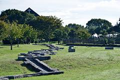 霞ケ丘公園 約720m(徒歩9分)