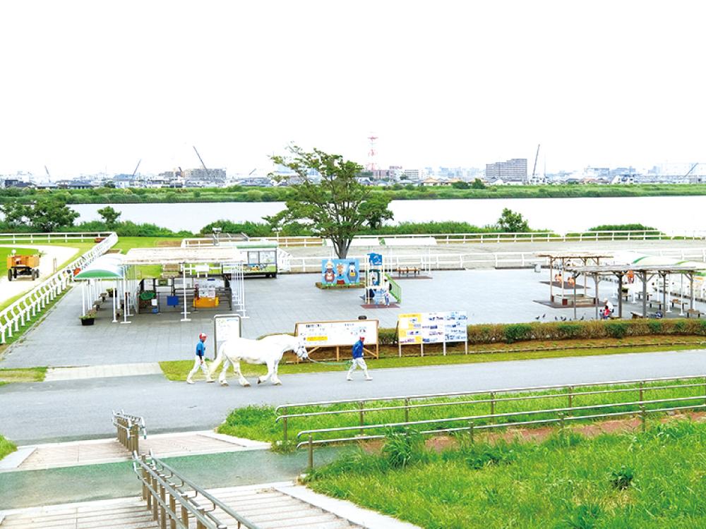 篠崎仲町公園 約310m(徒歩4分)