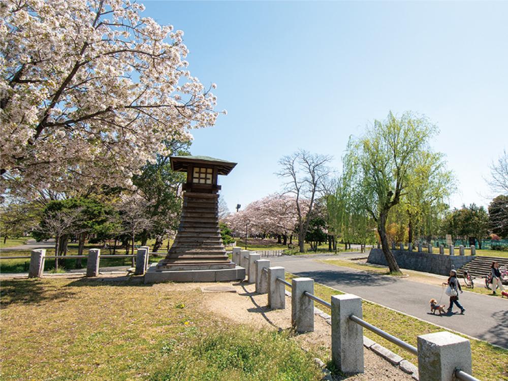 篠崎ポニーランド公園 約480m
