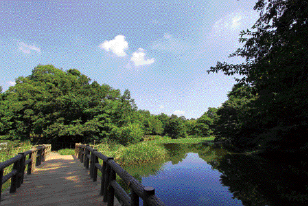 都立石神井公園 約1,590m(徒歩20分)