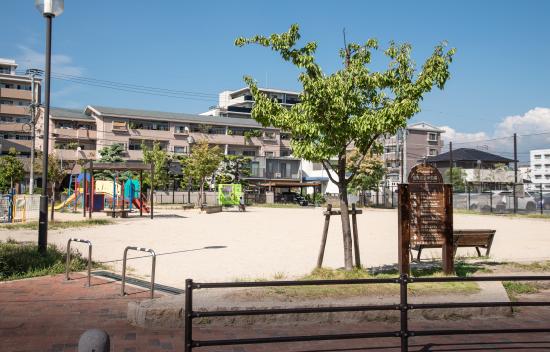 室見庄浜東公園 約400m(徒歩5分)
