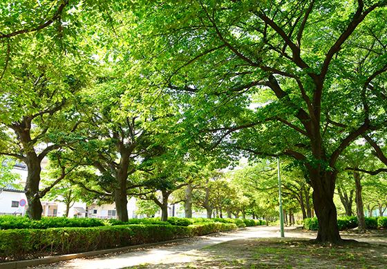 戸塚榎戸公園 約390m(徒歩5分)