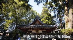 樹下神社 約190m(徒歩3分)