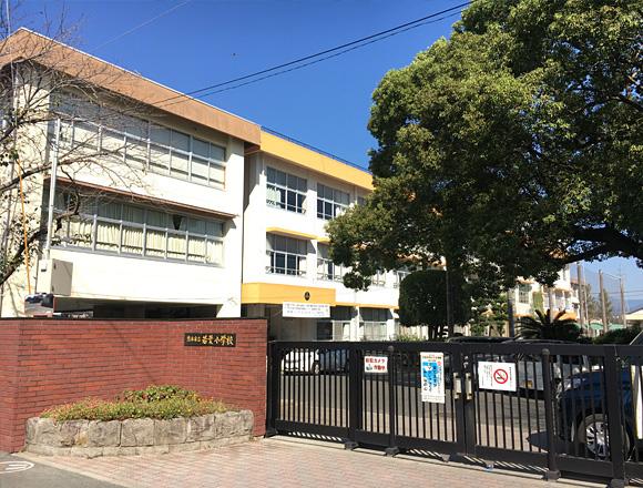 熊本市立若葉小学校 約500m(徒歩7分)
