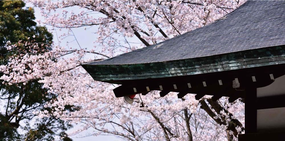 四條畷神社 約1,050m(徒歩14分)