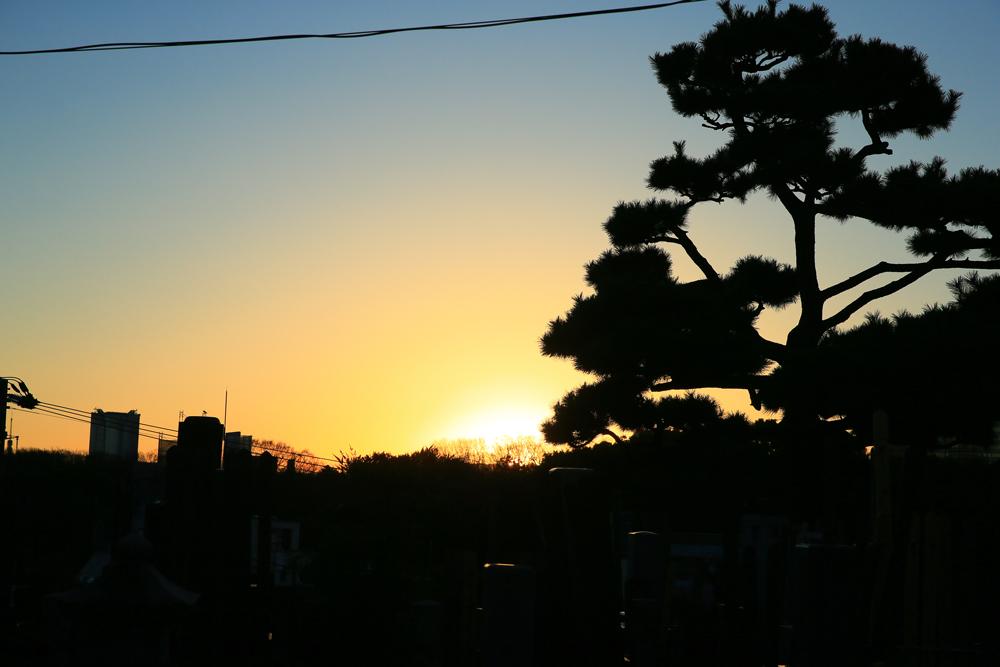 代々木八幡周辺の街並み 約400m(徒歩5分)