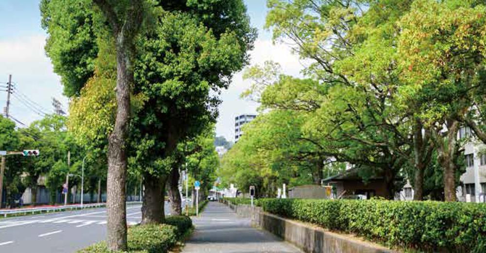 鹿児島大学周辺 約270m(徒歩4分)