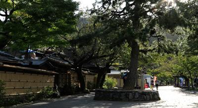 嵐山公園 約550m(徒歩7分)