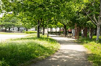 皿山中央公園 約10m(徒歩1分)