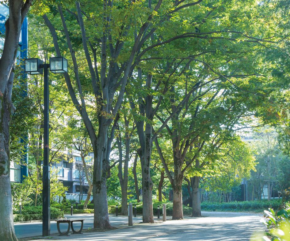 世田谷文学館 約720m(徒歩9分)