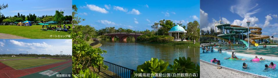 沖縄県総合運動公園 約2.7km(車4分)