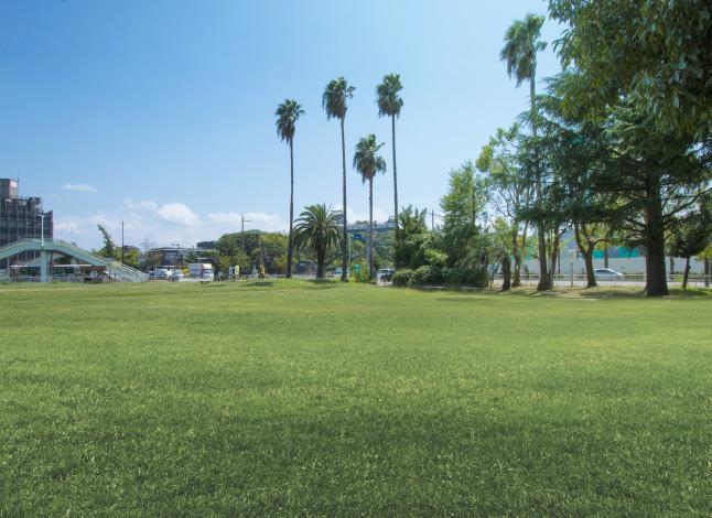 汀公園 約50m(徒歩1分)