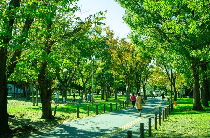 南砂三丁目公園 約570m(徒歩8分)