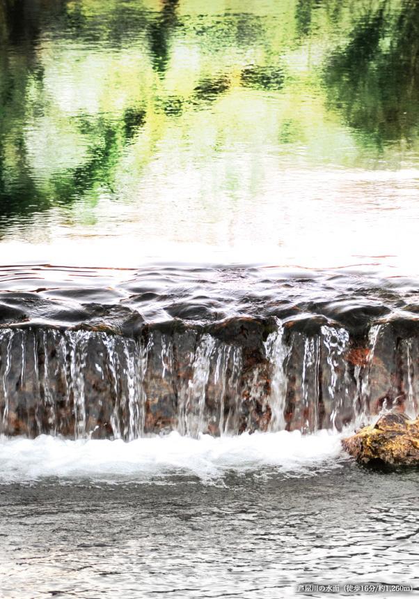 芦屋川の水面 約1,260m(徒歩16分)