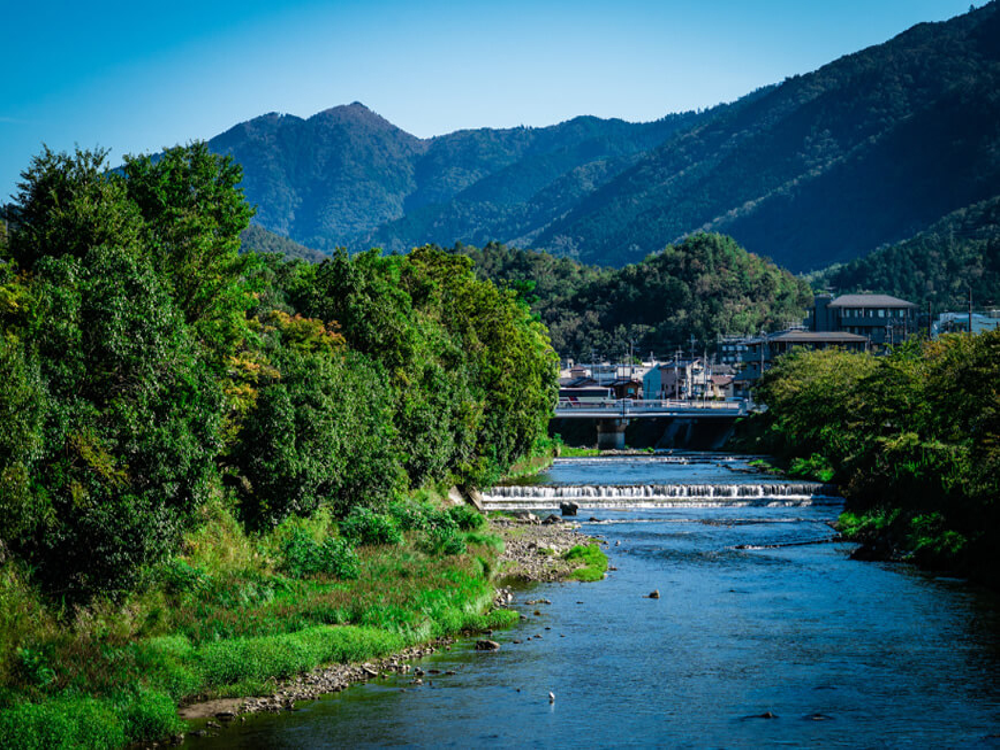 高野川 約10m(徒歩1分)