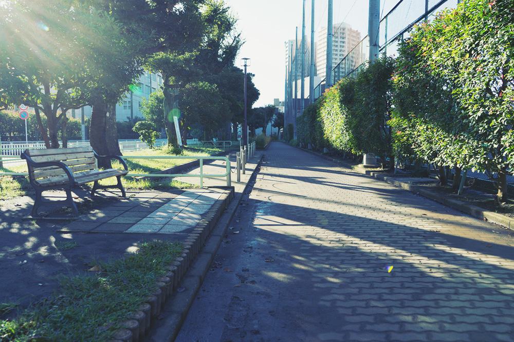 岡野公園 約10m(徒歩1分)