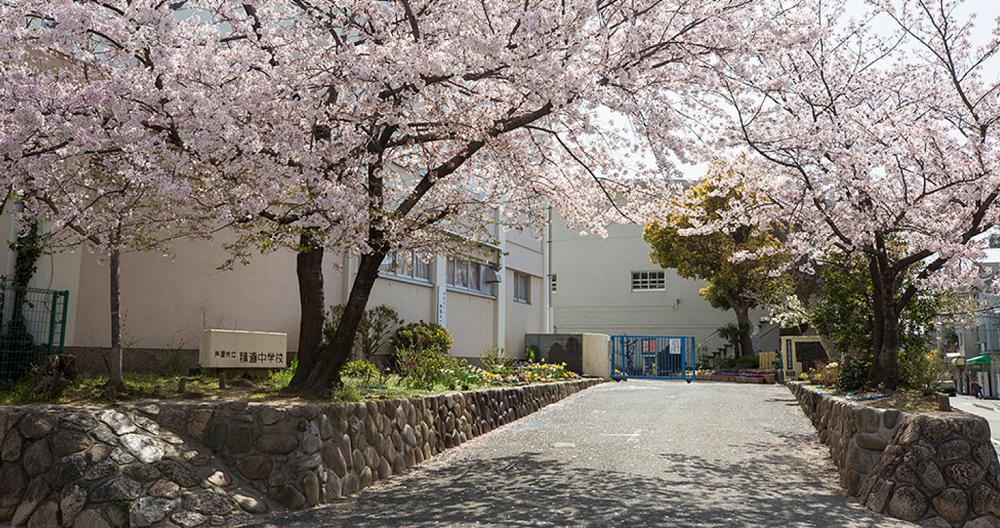 市立精道中学校 約670m(徒歩9分)
